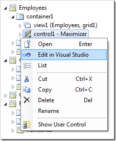 Editing the control in Visual Studio.