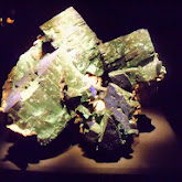 Houston Museum of Natural Science - 116_2795.JPG