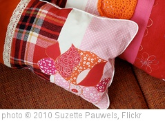 'Pillows detail (application)' photo (c) 2010, Suzette Pauwels - license: http://creativecommons.org/licenses/by/2.0/