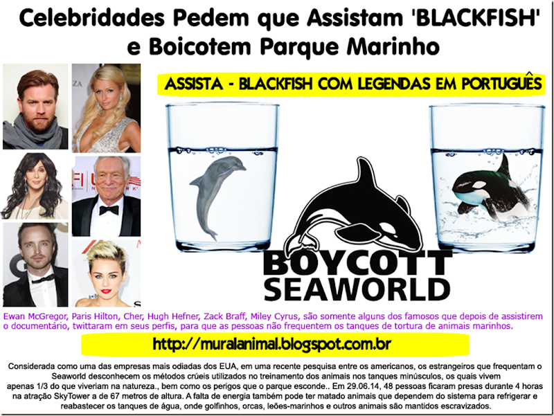 boycott-seaworld[3]