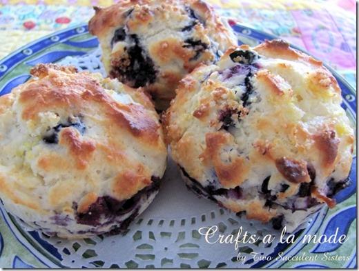 blueberry muffins 3