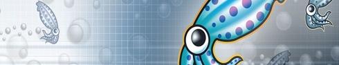 squid linux