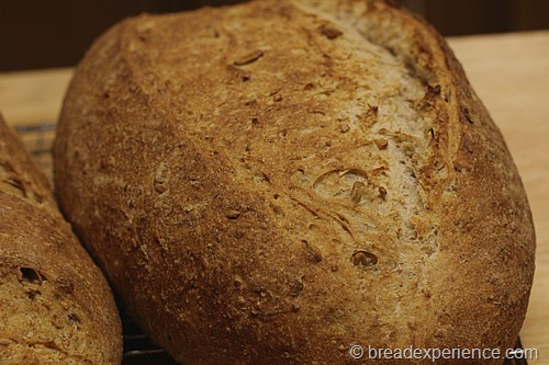 five-grain-rye-sourdough_1317