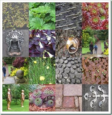 leics botanic gardens bh may 20142