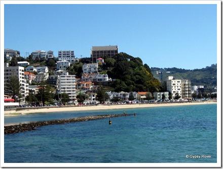 Wellingtons Oriental Bay.