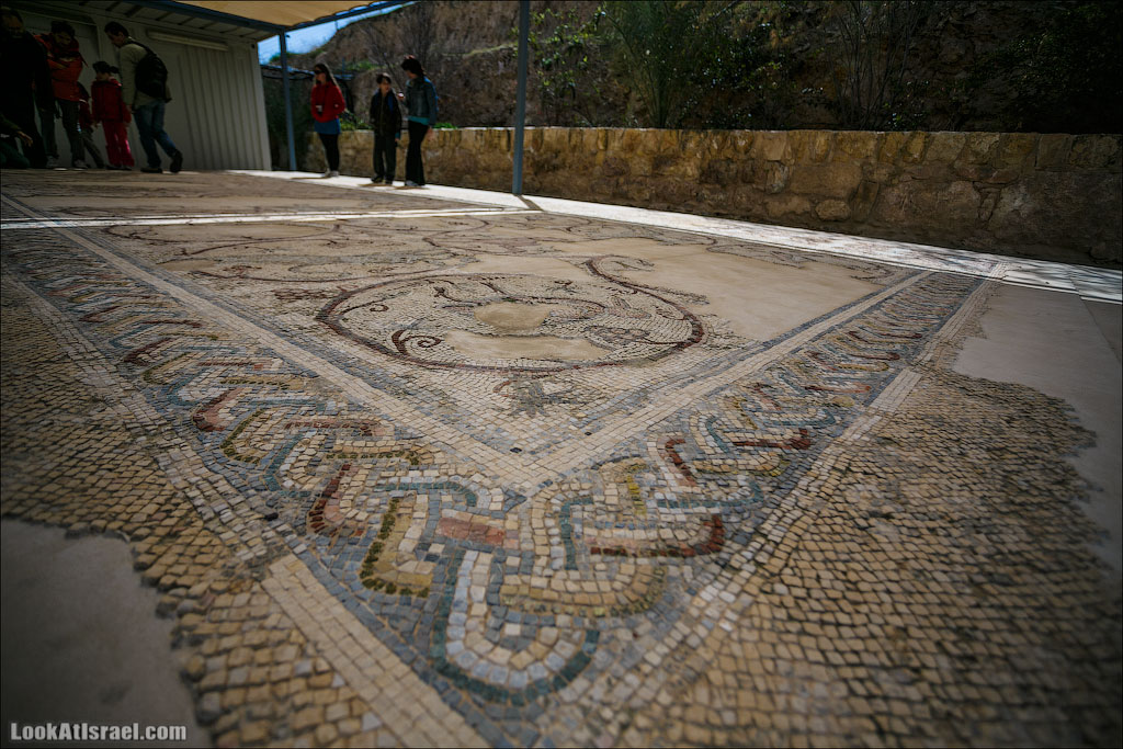 Мозаики от «Доброго самаритянина» (israel  путешествия иудея и самария и интересно и полезно выставки музеи фестивали  20130215 good samaritan mosaic 023 5D3 8371)