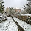 2013-sotosalbos-nieve20.jpg