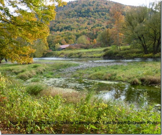 New York, Hwy 30 South, Oxbow Campground, East Branch Delaware River