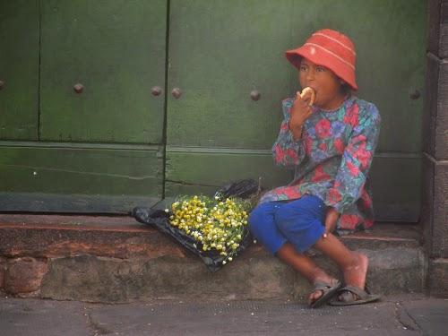Girl sells camomile