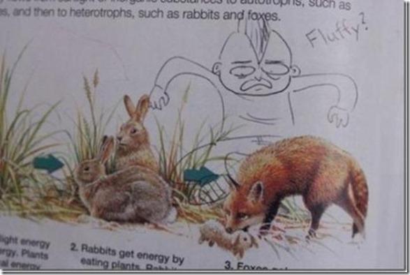 textbook-vandalism-5
