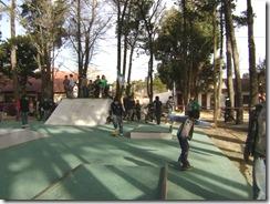 Skatepark en La Lucila - Obra elegida por los vecinos -