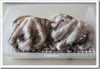 4-polp guisat-cuinadiari-1-1