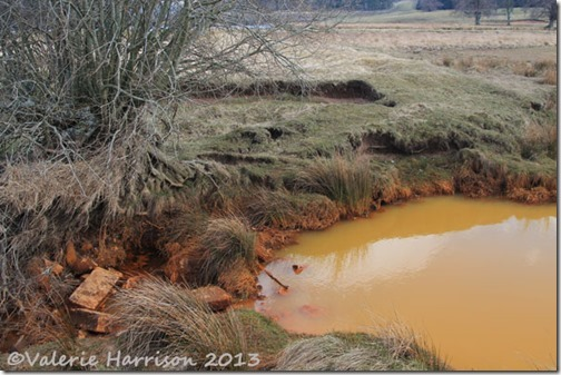 34-rusty-water