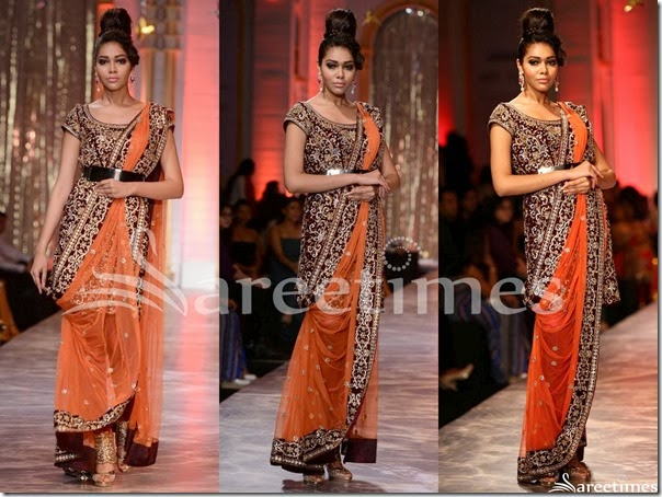 Neeta_Lulla_Brown_Net_Saree