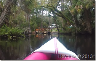 Pellicer Creek Kayaking 019