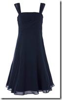 Coast Kyla Dress