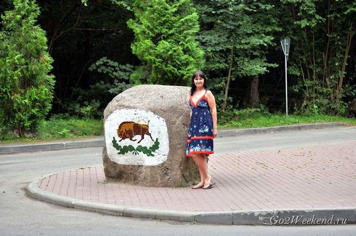 Kamenuki_hotel_belovezhskay_puszcza_39.jpg