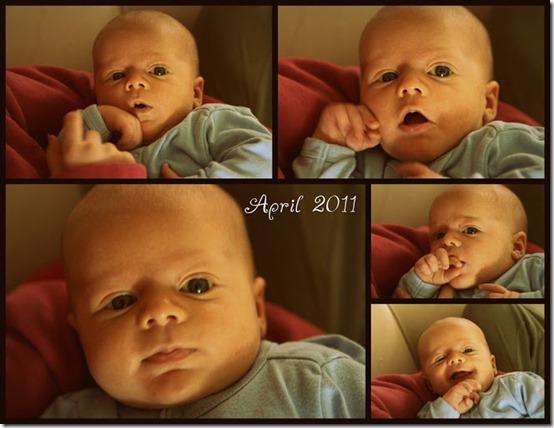 2011-04-4[4][1]