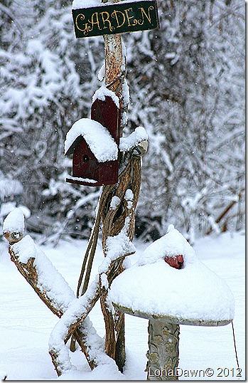 Garden_Dec292012