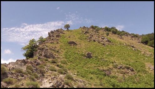 Mont Aigoual les 4000 marches