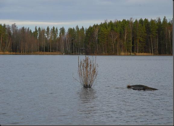 vensbergin kurvi ja haukijärvi 064