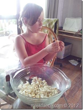 06 popcorn garland