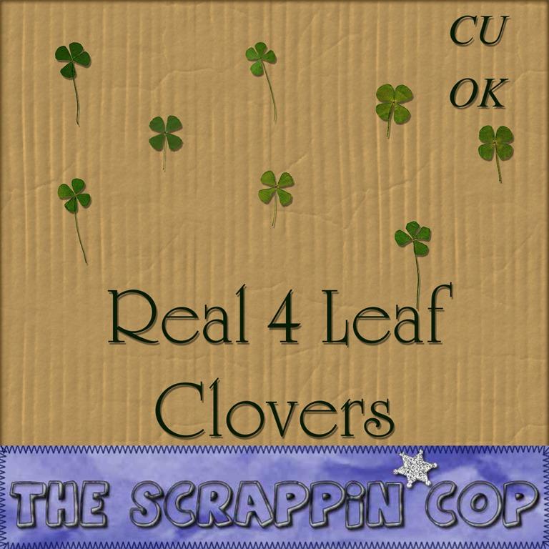 [SC_4LeafCloverPreview%255B6%255D.jpg]