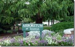 Relaxing Arboretum