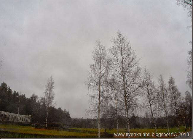 lauantain sää kuvia orava 022
