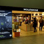 moleskine, strange name for a store in Milan, Milano, Italy