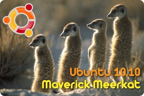 maverick-meerkat