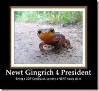 newt-Gingrich-2012-President-funny-picture