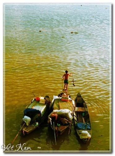 Mùa thu trên miền sông nước Long An, Việt Nam