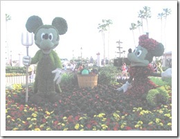 Florida vacation Epcot topiary Mickey and minnie