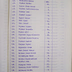 wykaz płatników składki gminy żydowskiej w Staszowie na rok 1930 cz.5.jpg