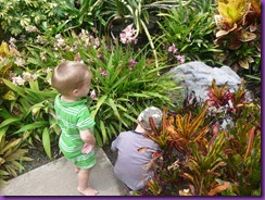 botanical gardens 024