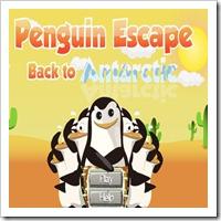 jogos-de-pinguim-escape