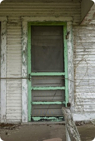 Old GREEN screen door