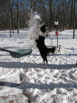 Chance catching snow