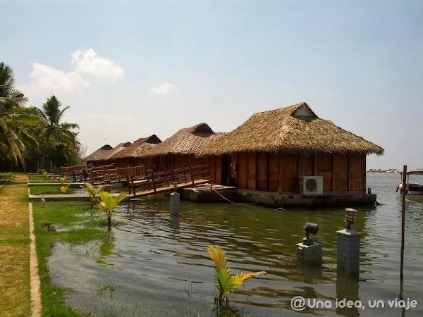 Kerala-backwaters-Poovar-9.jpg