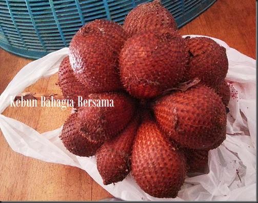 Salak buah
