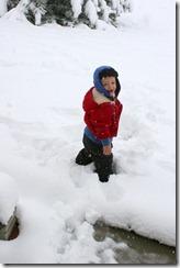 2011-10-26 First Snow (5)