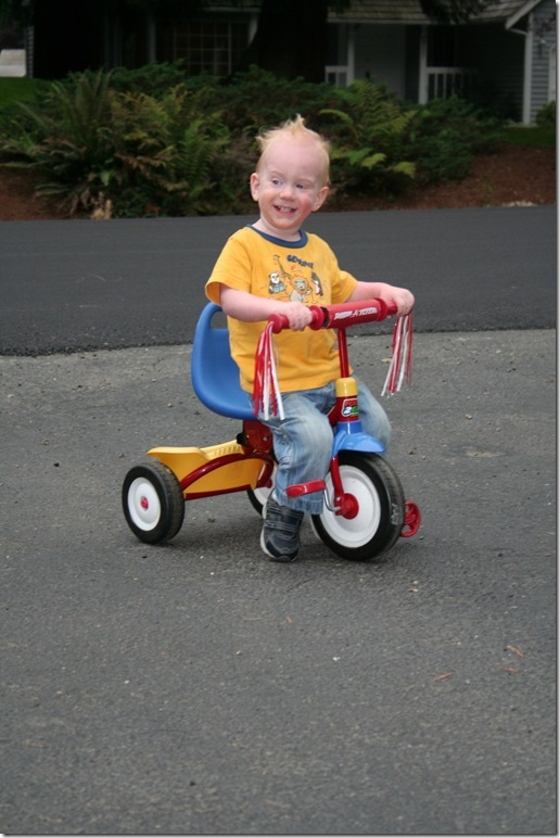 New tricycle (1)