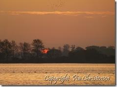 solopgang på Lolland