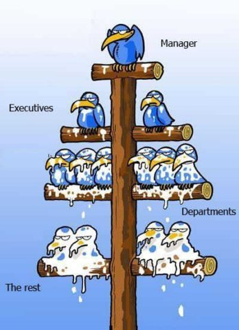 General Hierarchical Management Structure