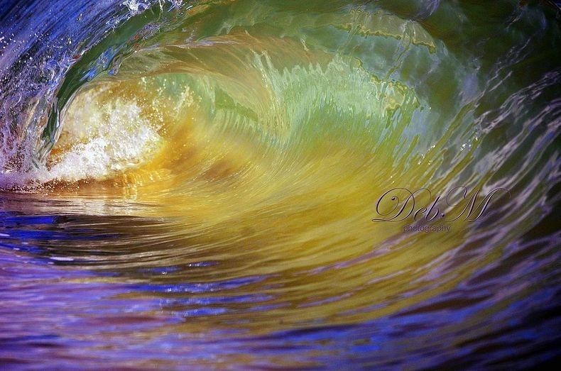 micro-wave-deb-morris8