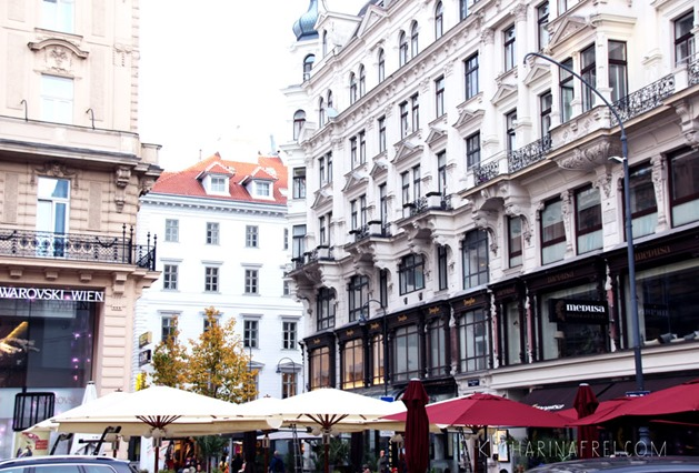 Vienna1013_5
