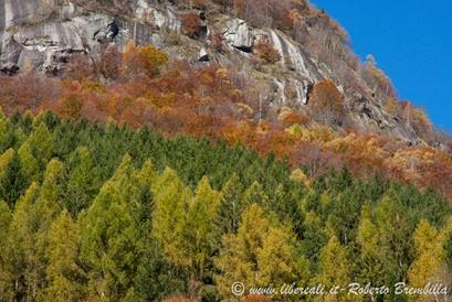 9-2014-11-01_Val di Mello (43)