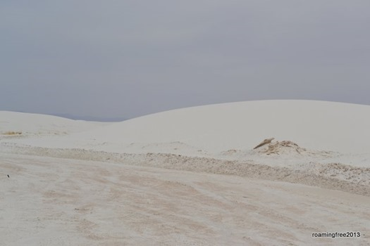 They plow the sand like snow
