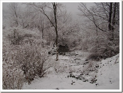 311 snow so pretty 028